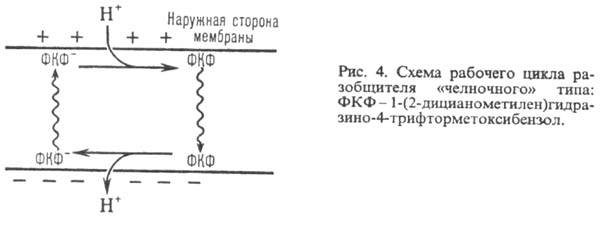 http://www.pora.ru/image/encyclopedia/4/7/6/9476.jpeg