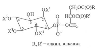 http://www.pora.ru/image/encyclopedia/5/3/7/15537.jpeg