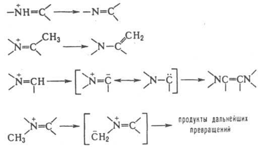 http://www.pora.ru/image/encyclopedia/9/3/5/6935.jpeg